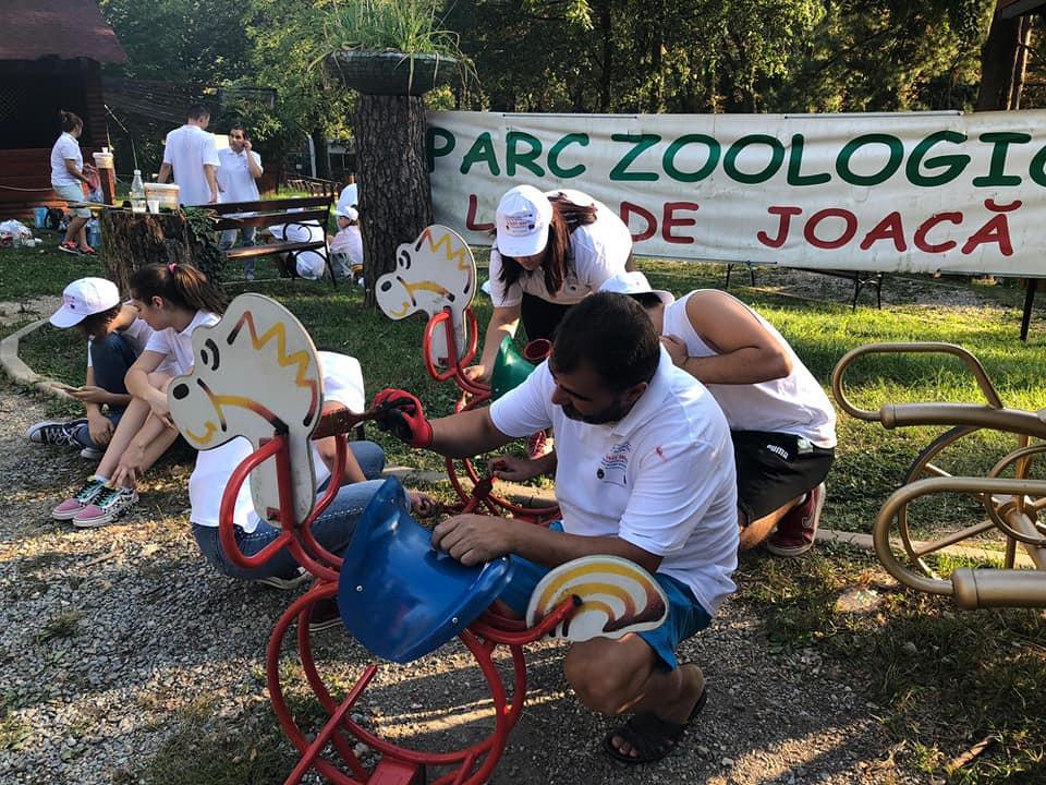 La Zoo Reșița locul de joacă a prins culoare și viață grație unor tineri voluntari din oraș (7)